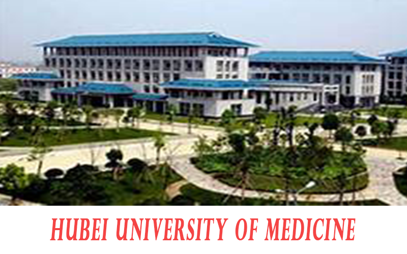 best country for mbbs for indian students